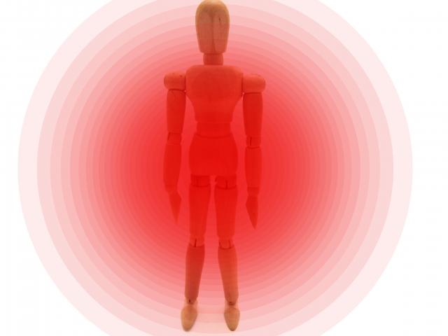 増大パンツの仕組みはペニス増大サプリ同様「血行促進」